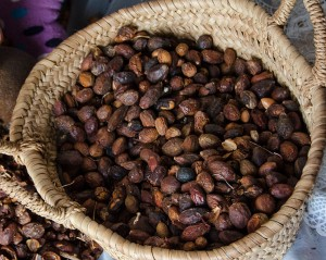 Argan nuts are harvested from the forest, then fire-roasted to soften the husk. Credit: Serenity Bolt
